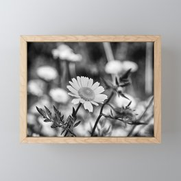Singularity III - Black & White Framed Mini Art Print