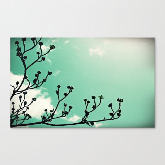 Glowing Buds Canvas Print