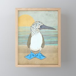Blue Footed Booby Framed Mini Art Print