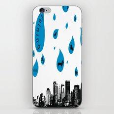 Raining Cats & Dogs iPhone & iPod Skin