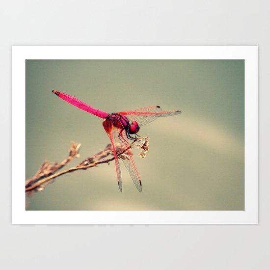 Pink Love Art Print