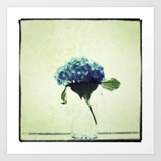 Hydrangea My Favorite Art Print