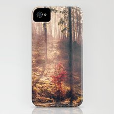 Little Red Tree iPhone (4, 4s) Slim Case