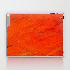 Glazed Terracotta Laptop & iPad Skin