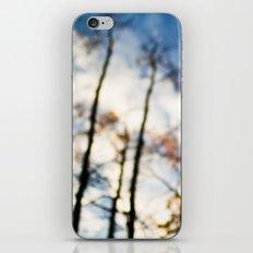 looking up . iii iPhone & iPod Skin