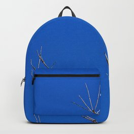 Tree Reaches for the Sky, with a Bony Hand Backpack