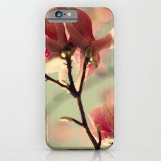Dogwood flowers iPhone 6 Slim Case
