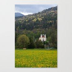Ljubljana marshland Canvas Print