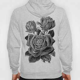 Engraved Rose Hoody