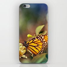 Magical Garden iPhone & iPod Skin