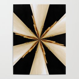 Black, White and Gold Star Poster