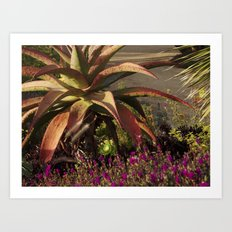 meanwhile in california Art Print