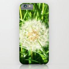Dandelion Remnants iPhone 6s Slim Case