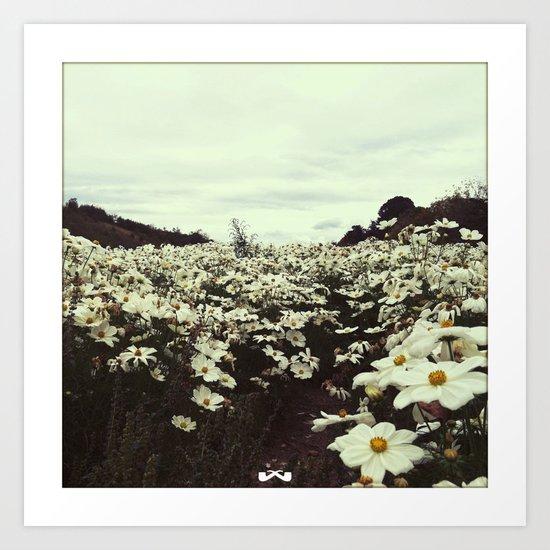 Bloom. Art Print