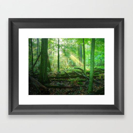 Devil's Lake State Park Framed Art Print