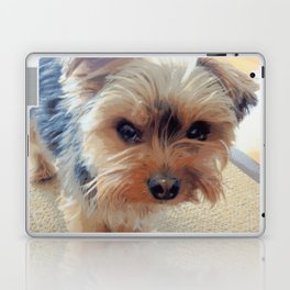 Yorkie | Dogs | Terrier | Pets | Humor | What!?! (with text) Laptop & iPad Skin