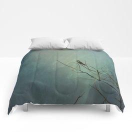 Noticed  Comforters