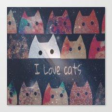 cat-127 Canvas Print