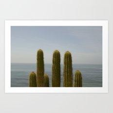Sea Cactus Art Print