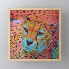 Popular Animals - Cheetah Framed Mini Art Print