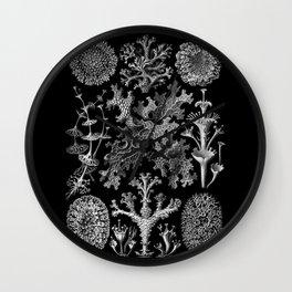Lichens(Lichenes) by Ernst Haeckel Wall Clock