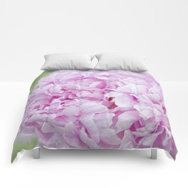 Soft Beauty Comforters