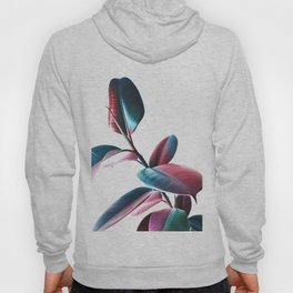 Colourful Rubber Leaves Hoody