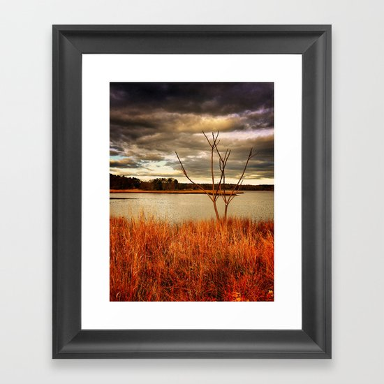 Fall Stalk Framed Art Print
