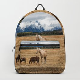 Mountain Horse - Western Style in the Grand Tetons Backpack