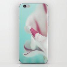 Camellia iPhone & iPod Skin