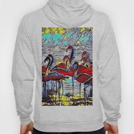 Color Kick Flamingos Hoody
