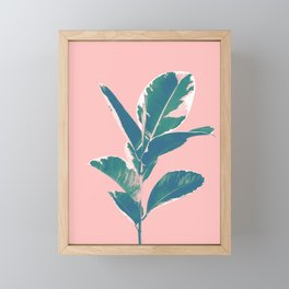 Ficus Elastica Finesse #3 #tropical #foliage #decor #art #society6 Framed Mini Art Print