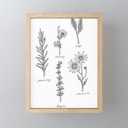 Kitchen Herbs Framed Mini Art Print