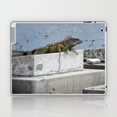 IGGY the Iguana  Laptop & iPad Skin