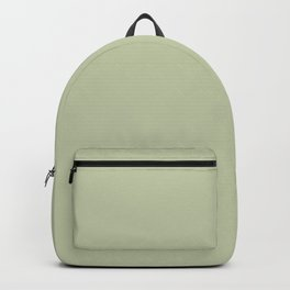 Pratt and Lambert 2019 Mellon Green (Sage Green) 18-28 Solid Color Backpack
