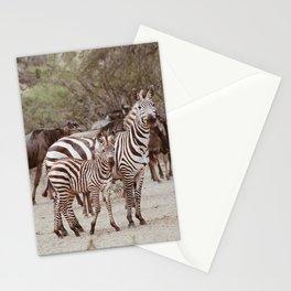 baby and mama zebra in Serengeti desert Stationery Cards