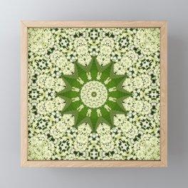 Elderflower mandala Framed Mini Art Print