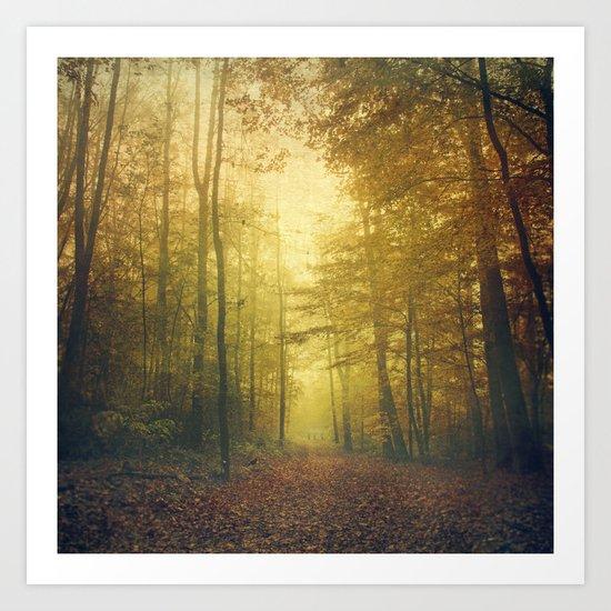 fall morning forest Art Print
