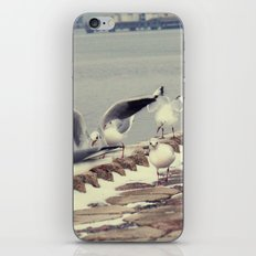 what?? iPhone & iPod Skin