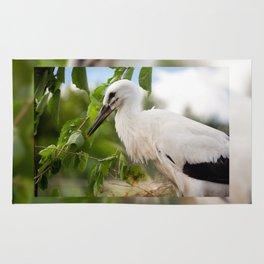 Orphaned one White Stork Rug