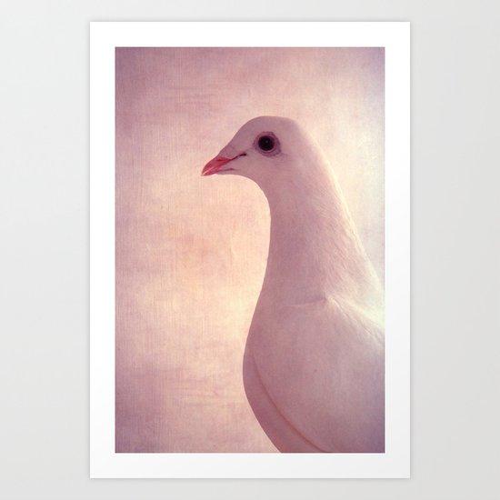 pigeons VI Art Print