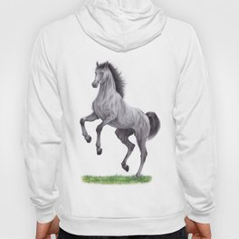 Horse colored pencil illustration Hoody