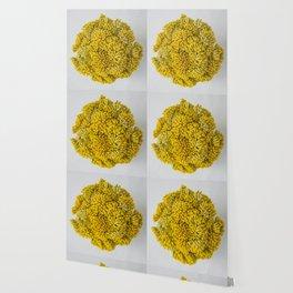 curry flowers II Wallpaper