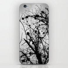 Spooky Tree Silhouette iPhone & iPod Skin