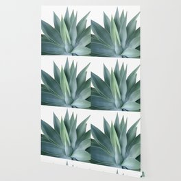 Agave blanco Wallpaper
