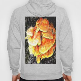 Fried Chicken of the Woods Hoody