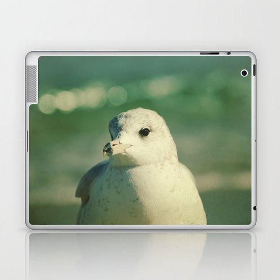 Seagull Close Up Laptop & iPad Skin