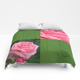 Pink Roses in Anzures 2 Blank Q5F0 Comforters