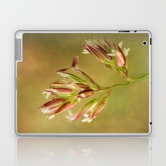 Canary Reed Grass Flowers Laptop & iPad Skin