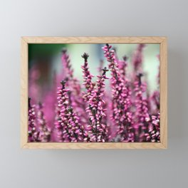 Pink Blossoms Framed Mini Art Print